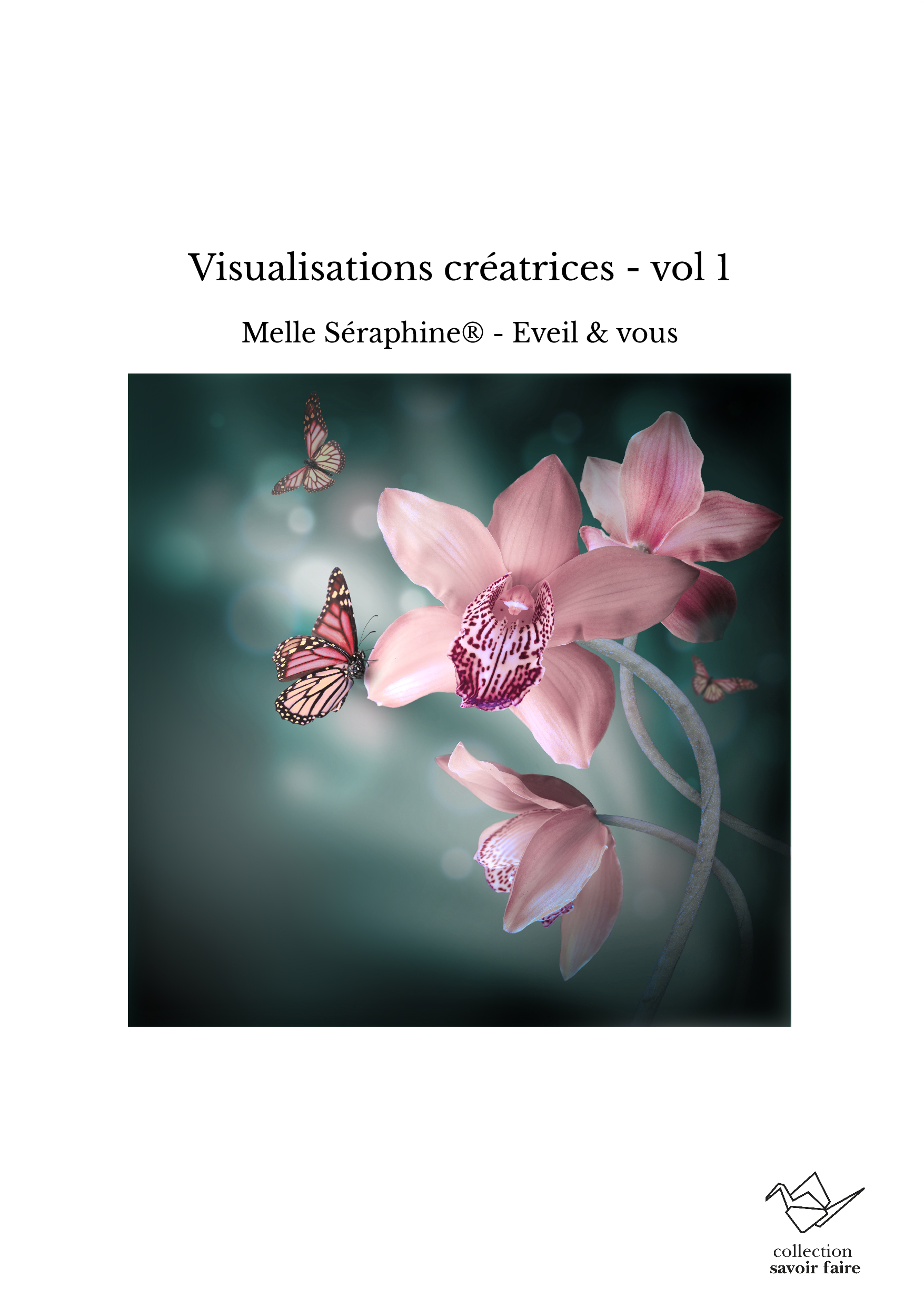 Visualisations créatrices - vol 1