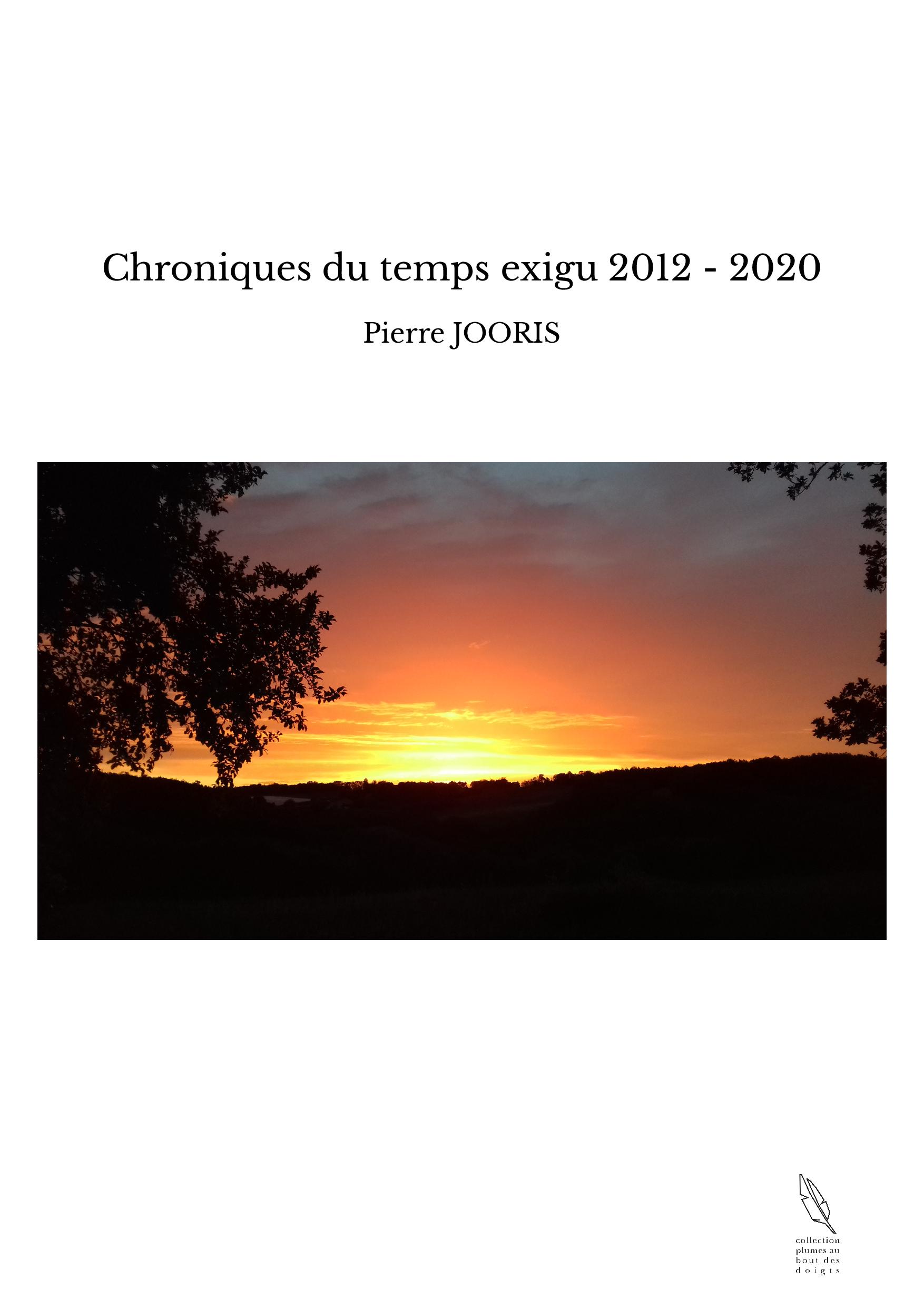 Chroniques du temps exigu 2012 - 2020