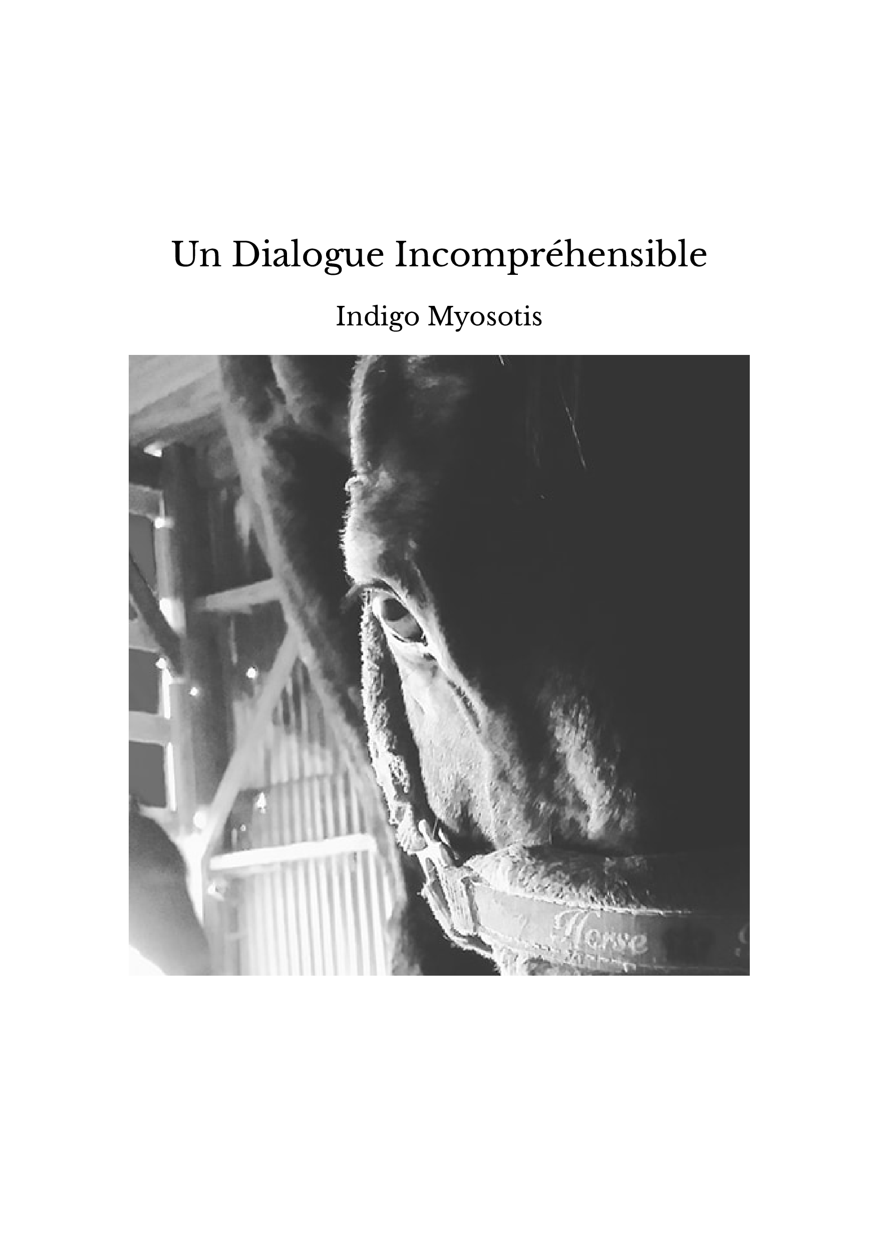 Un Dialogue Incompréhensible