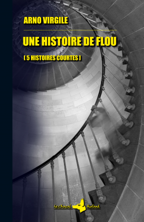 UNE HISTOIRE DE FLOU
