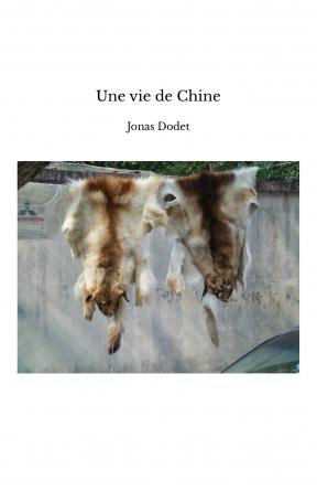 Une vie de Chine