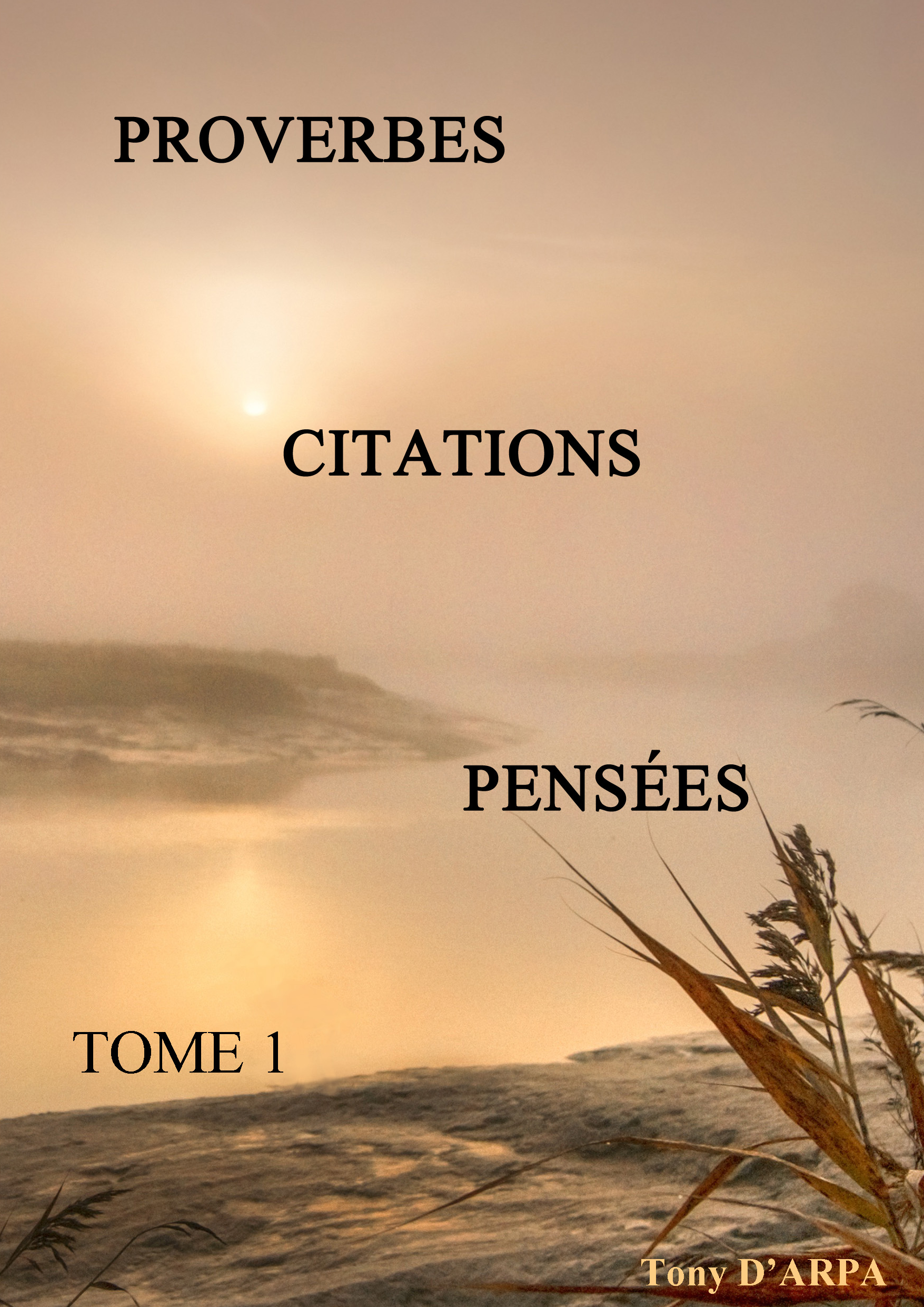 Proverbes, Citations, Pensées TOME 1