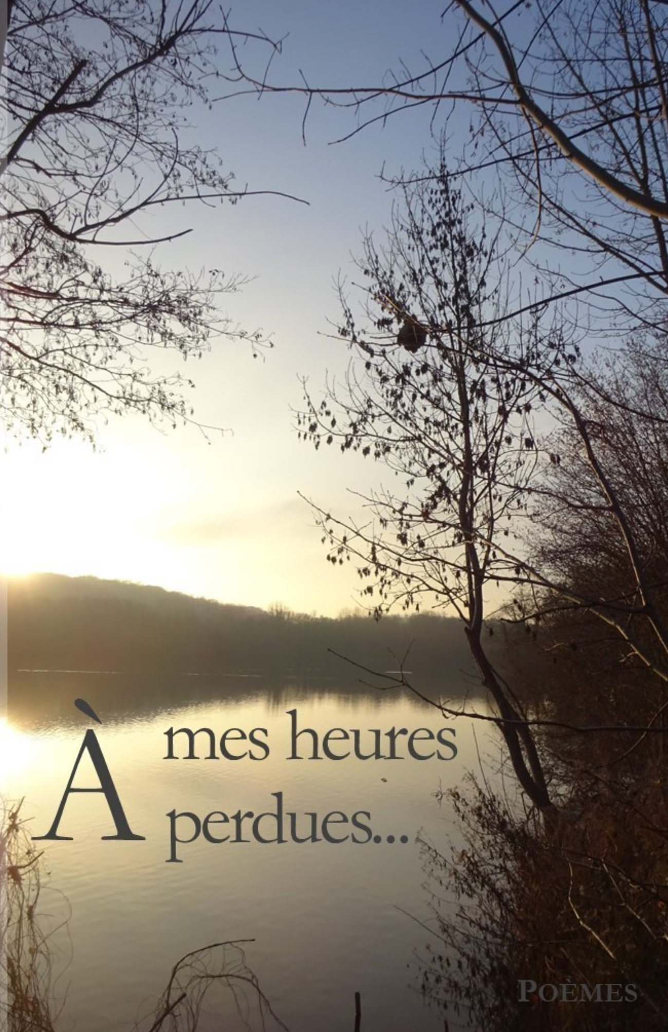 A mes heures perdues