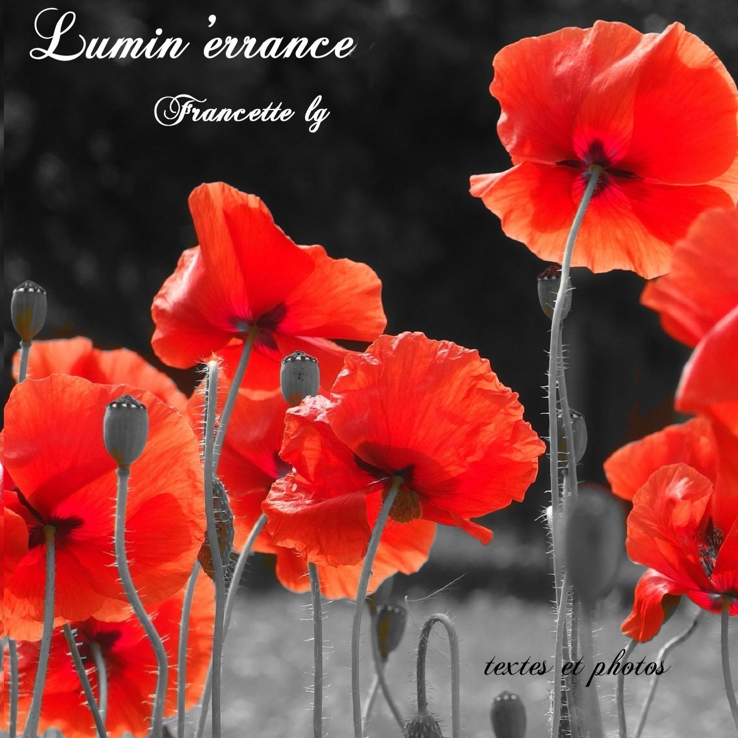 Lumin'errance