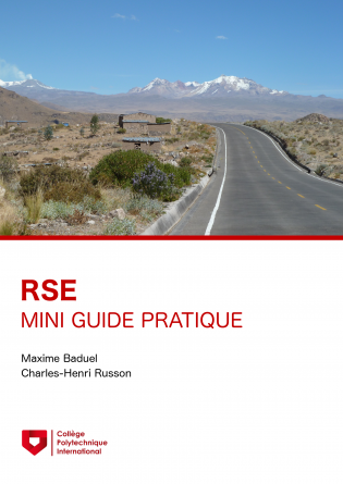 Mini-guide RSE