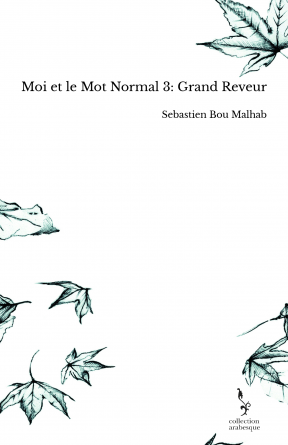 Moi et le Mot Normal 3: Grand Reveur