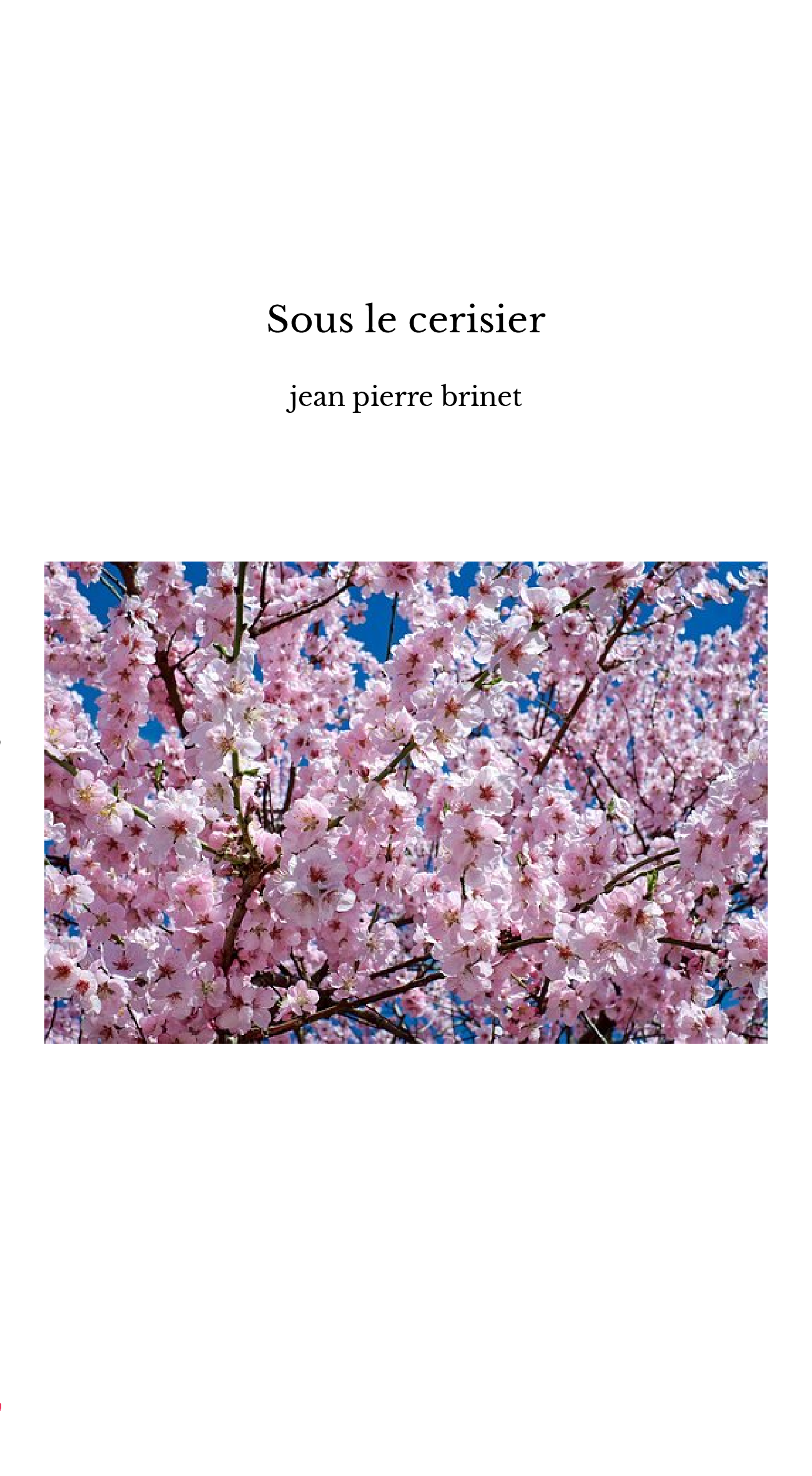 Sous le cerisier