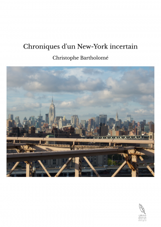 Chroniques d'un New-York incertain