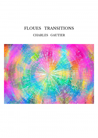 FLOUES TRANSITIONS