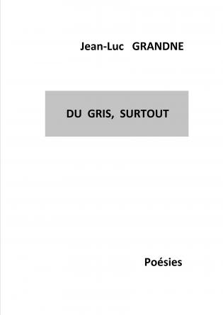 DU GRIS, SURTOUT