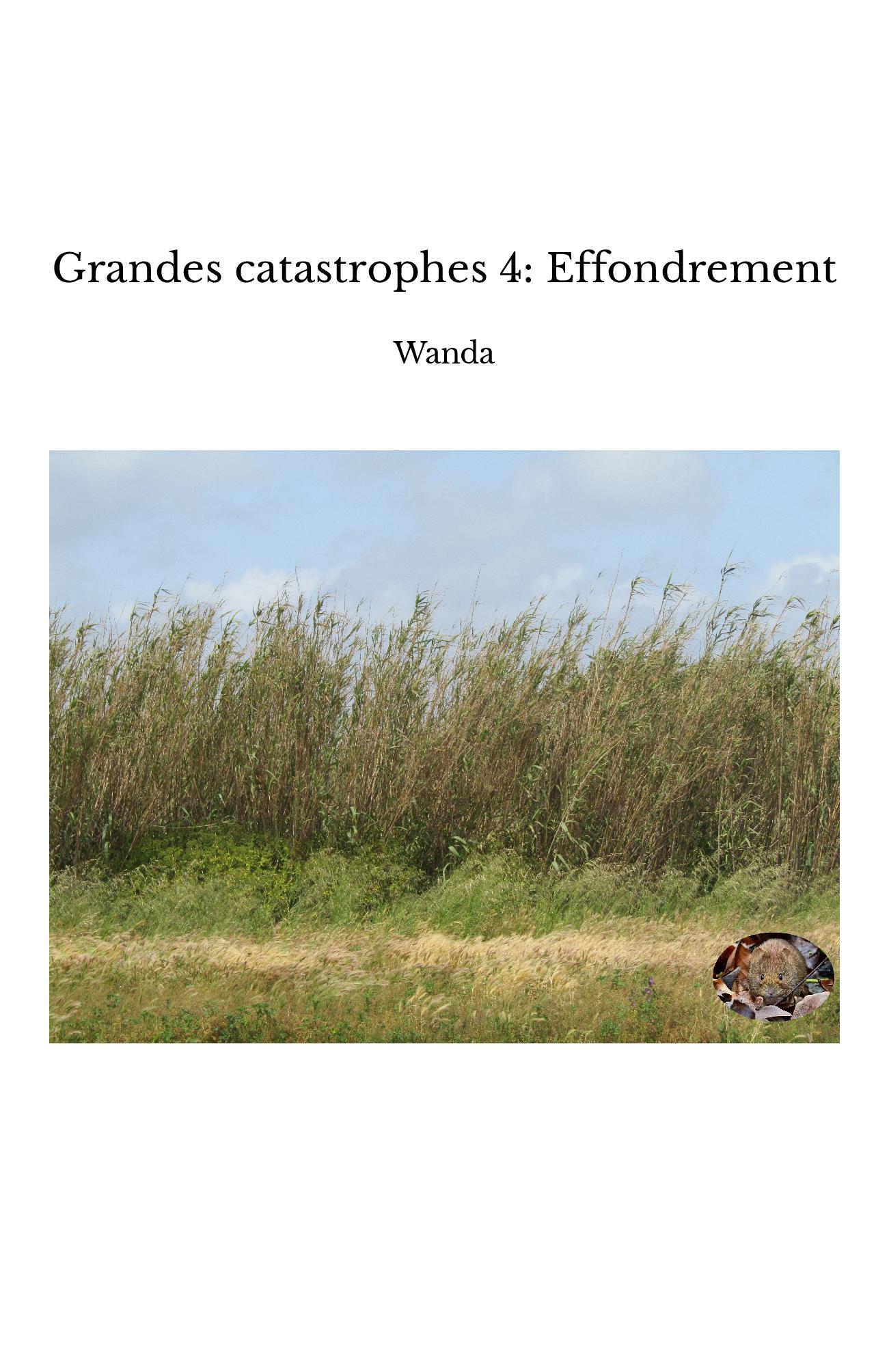 Grandes catastrophes 4: Effondrement
