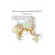 Macro-Comparative Studies I (2010-11)