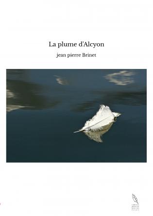 La plume d'Alcyon