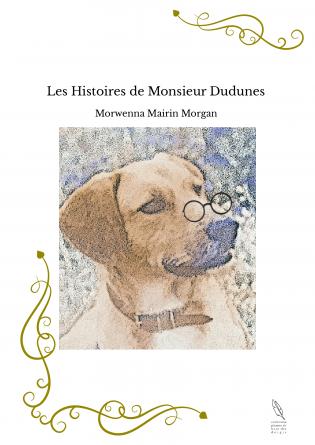Les Histoires de Monsieur Dudunes