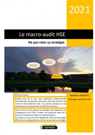 Le macro-audit HSE