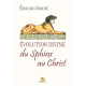 Evolution divine du Sphinx au Christ