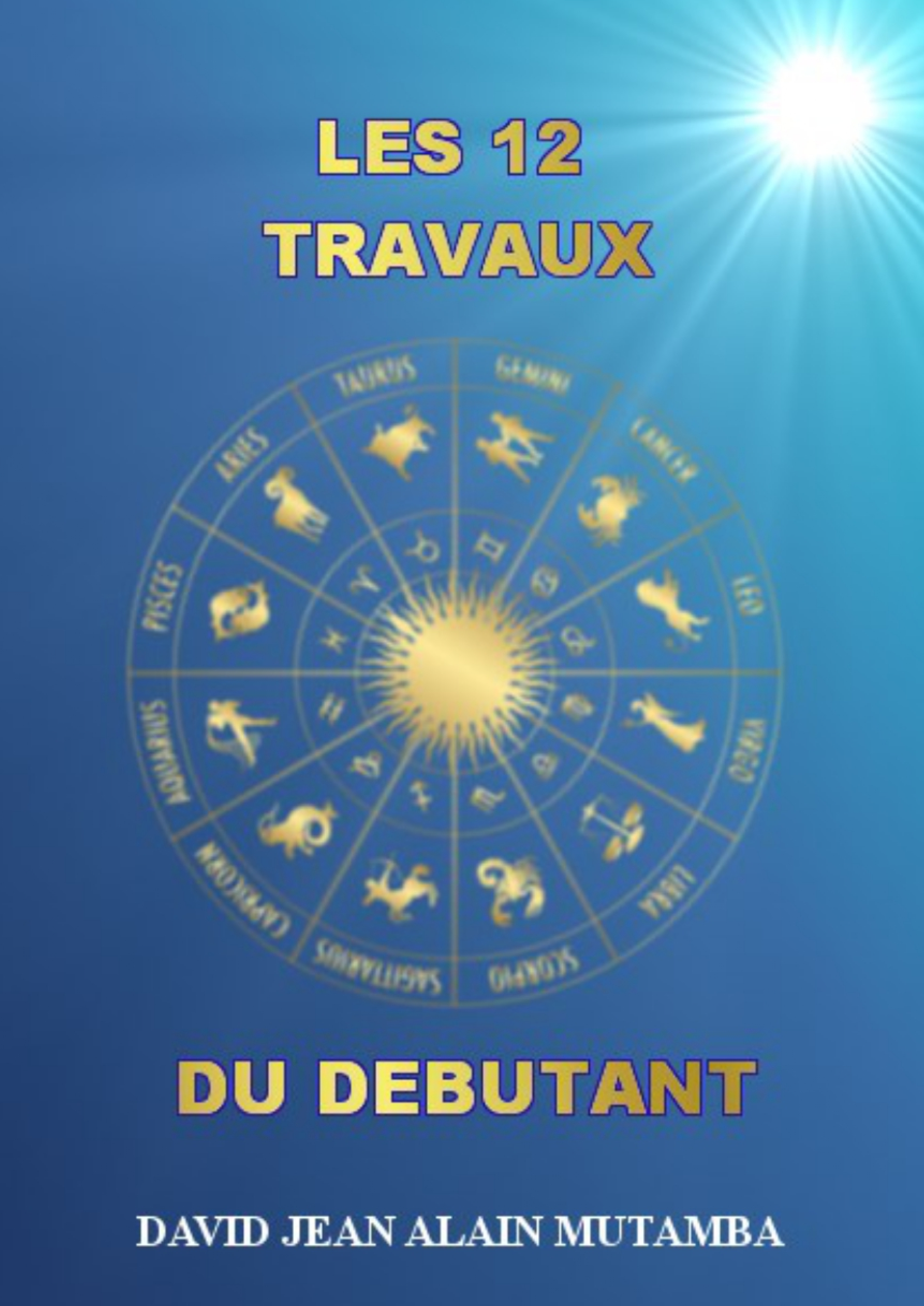 LES 12 TRAVAUX DU DÉBUTANT