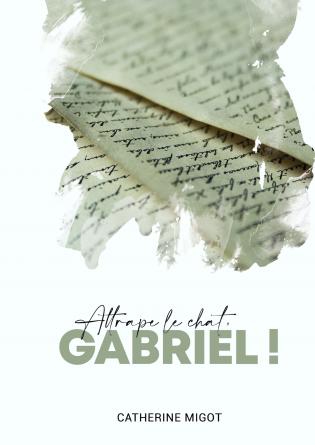 Attrape le chat, Gabriel !