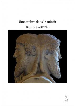 Une ombre dans le miroir