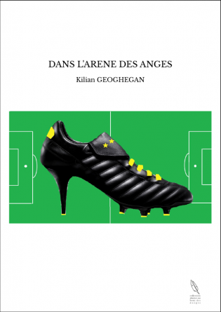 DANS L'ARENE DES ANGES