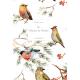 Les Oiseaux de Mamie
