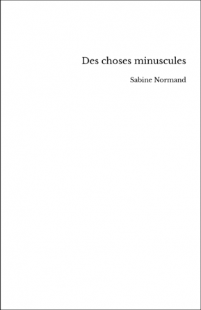 Des choses minuscules