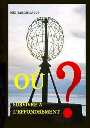 Ou survivre à l'effondrement ?