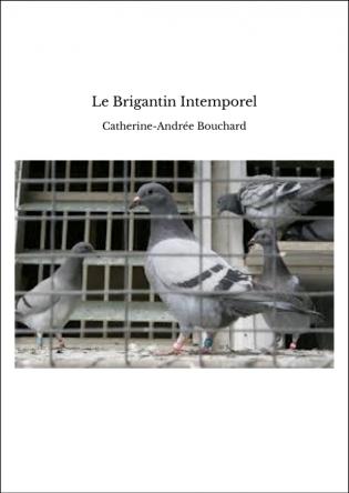 Le Brigantin Intemporel