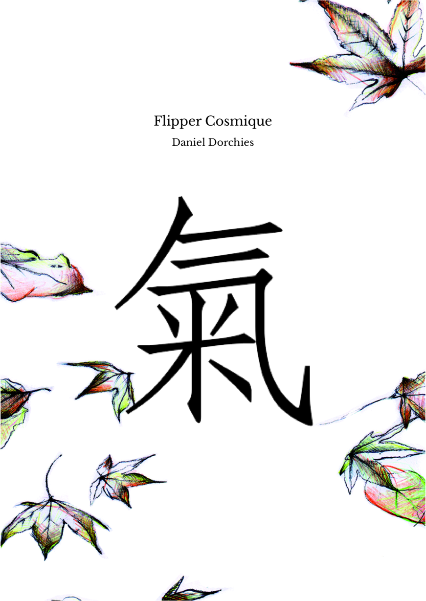 Flipper Cosmique