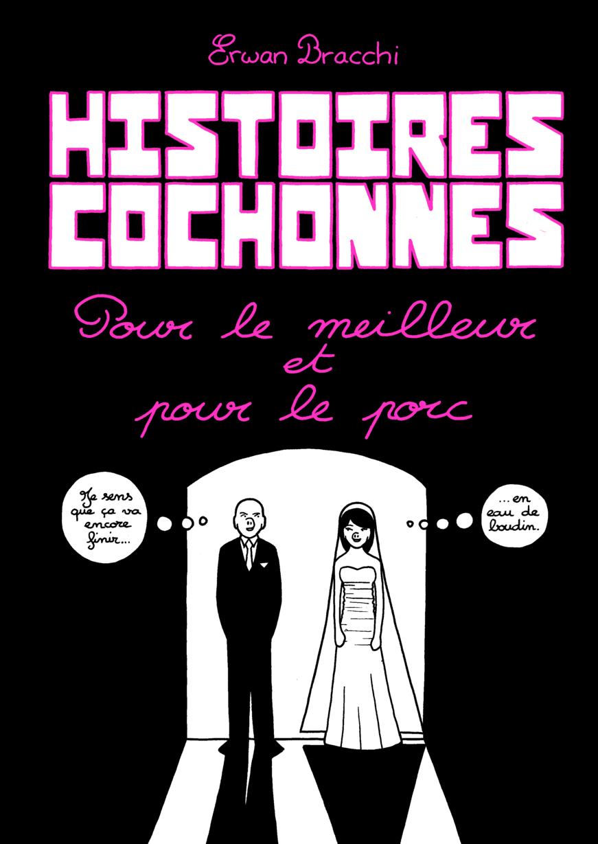 Histoires cochonnes, tome 2