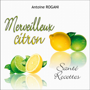 Merveilleux citron - Santé-Recettes
