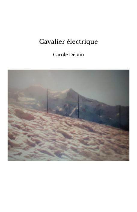 Cavalier électrique