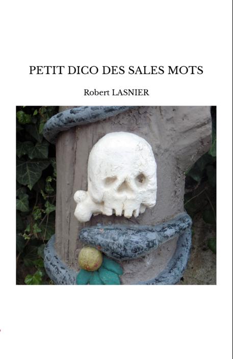 PETIT DICO DES SALES MOTS