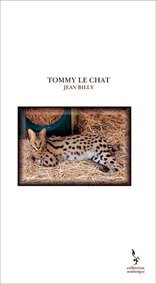 TOMMY LE CHAT