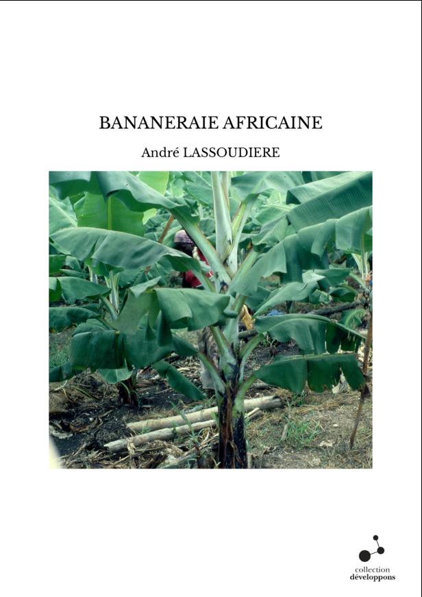 BANANERAIE AFRICAINE