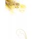 Canicarnet - Berger des Shetland