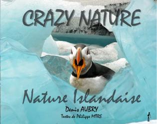 CRAZY NATURE Nature Islandaise