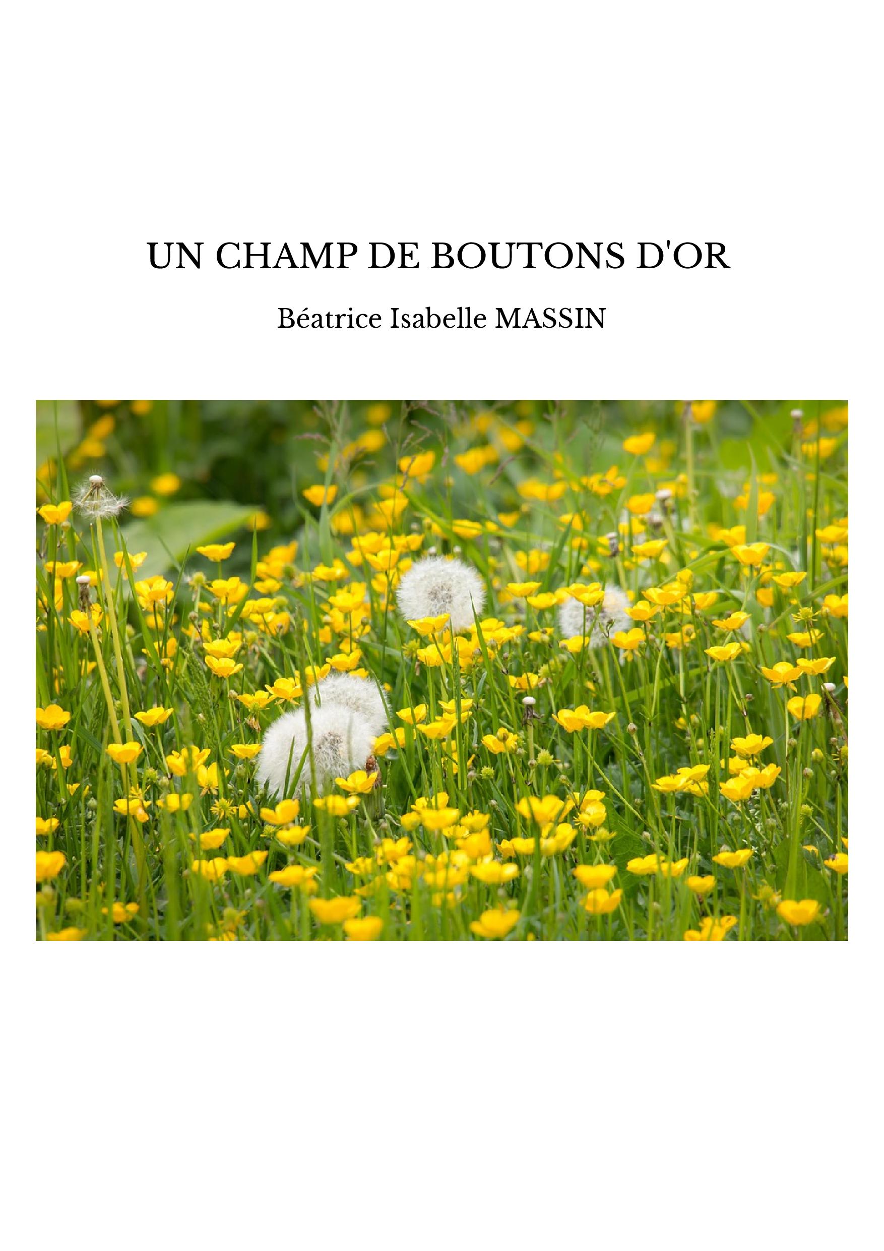 UN CHAMP DE BOUTONS D'OR