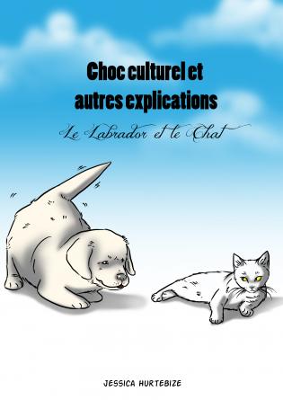 Choc culturel et autres explications