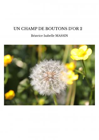UN CHAMP DE BOUTONS D'OR 2