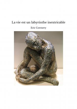La vie est un labyrinthe inextricable