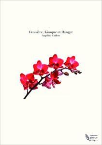 Croisière, Kiosque et Danger
