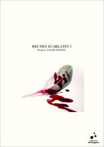 BRUMES ECARLATES 3