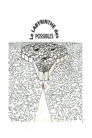 Le labyrinthe des possibles