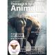 Thérapie & Spiritualité Animales N°4