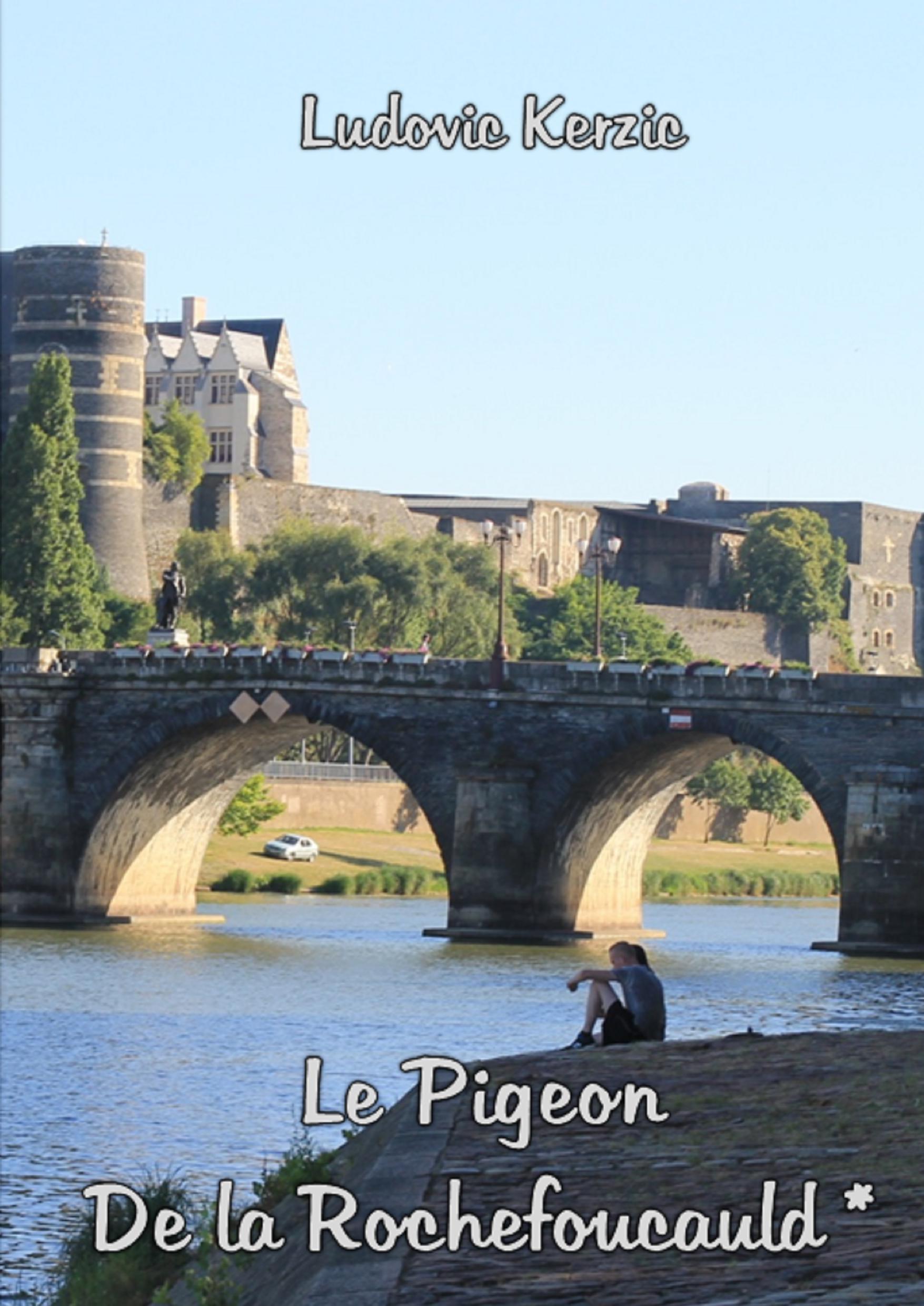 Le Pigeon de la Rochefoucauld *