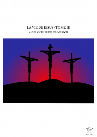 LA VIE DE JESUS (TOME II)