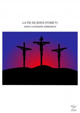 LA VIE DE JESUS (TOME V)