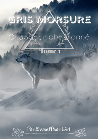 Gris Morsure - Tome 1