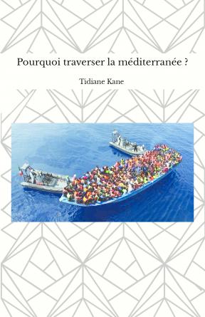 Pourquoi traverser la méditerranée ?